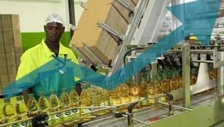 Angola sai da recessão e cresce 1,9% este ano - FocusEconomics