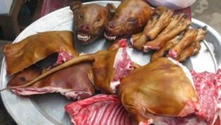 Polícia angolana detem cidadão por alegada venda de carne de cão